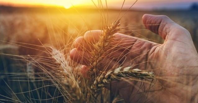 PANKOBİRLİK'ten Dünya Çiftçiler Günü açıklaması