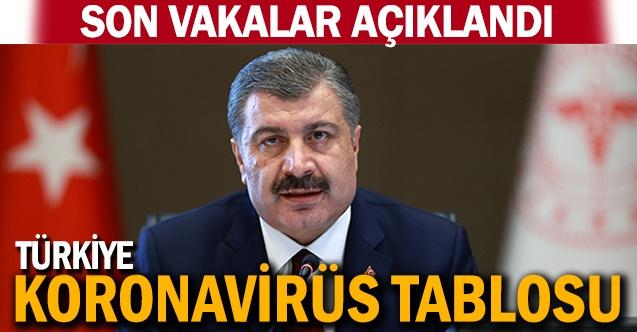 Son 24 saat Türkiye korona virüs bilançosu açıklandı!